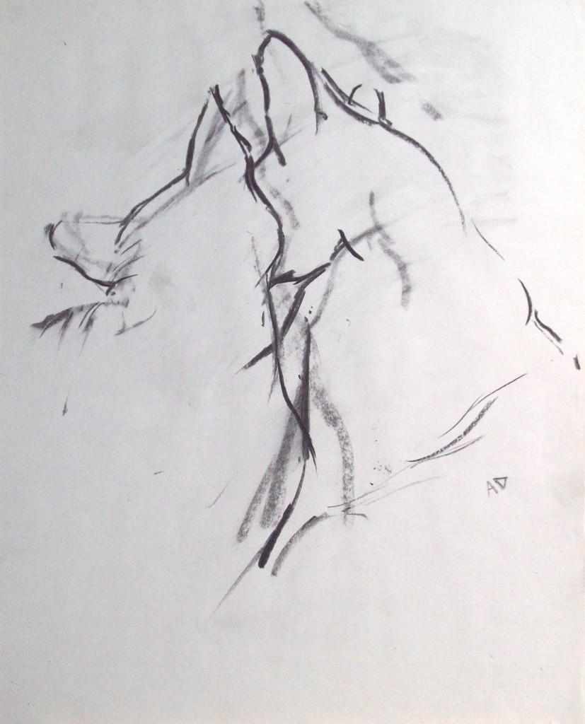 Charcoal drawing by Alan Dedman
